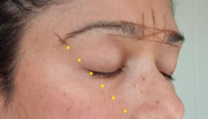Face mapping for eyebrows with markup